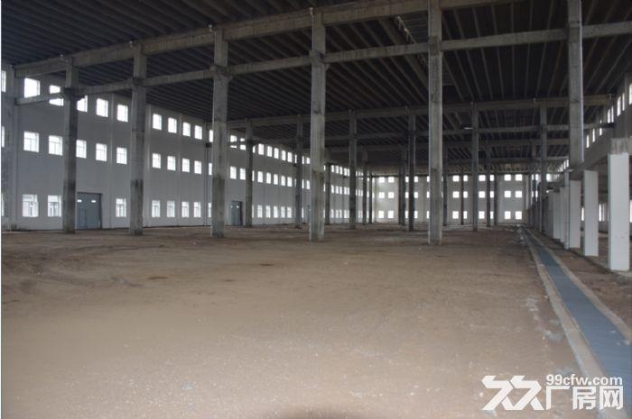 黑龙江荣程泰来产业园厂房招租-图(6)