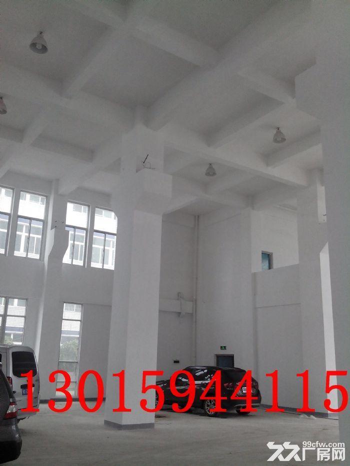 标准厂房1楼出租4000平米层高8米-图(1)