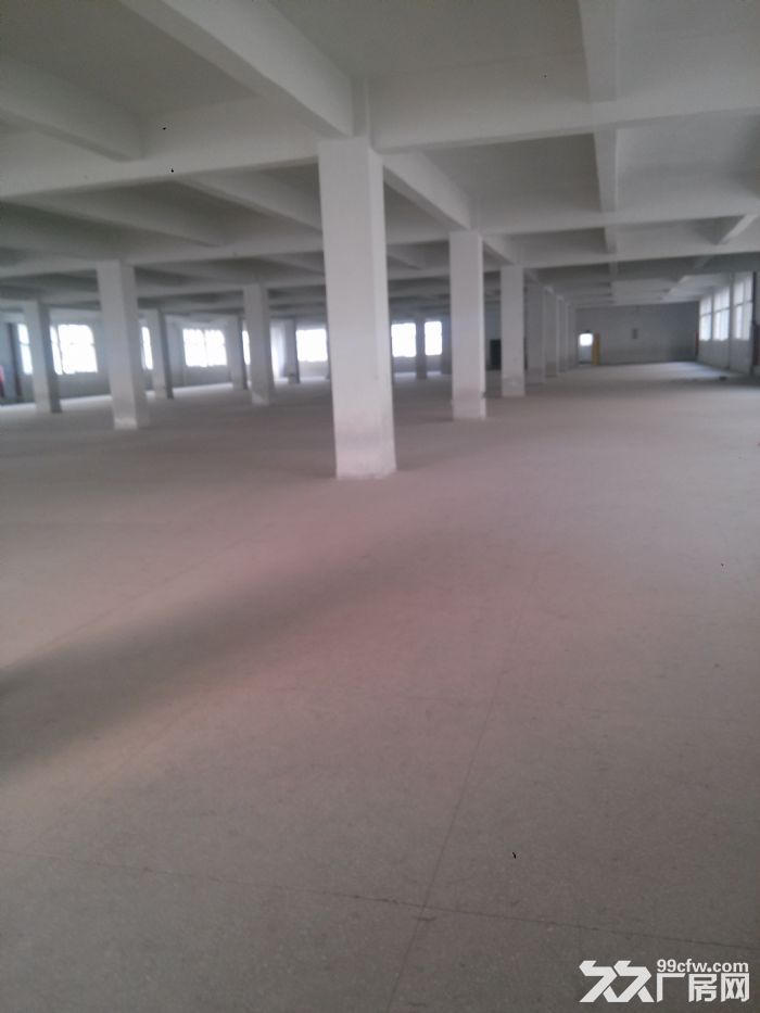 标准厂房3楼出租3300平米租金便宜-图(1)