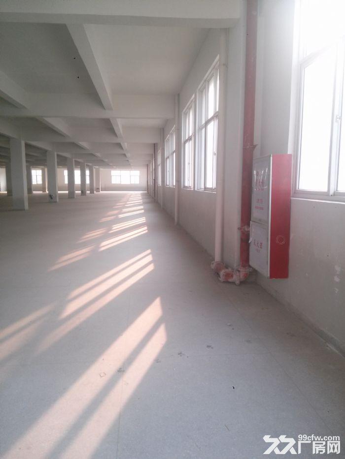 1楼分租1000平米-图(1)