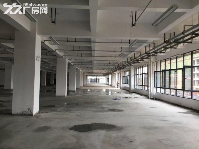 百万平米厂房可租可售,50年产权-图(5)