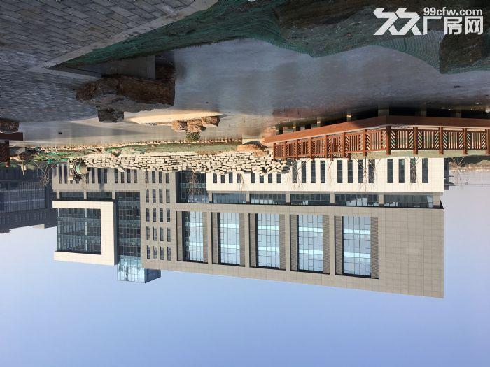 百万平米厂房可租可售,50年产权-图(8)