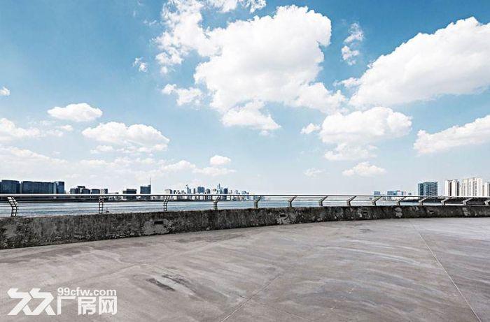 龙湾区滨海区10亩水泥地堆场可分租-图(1)