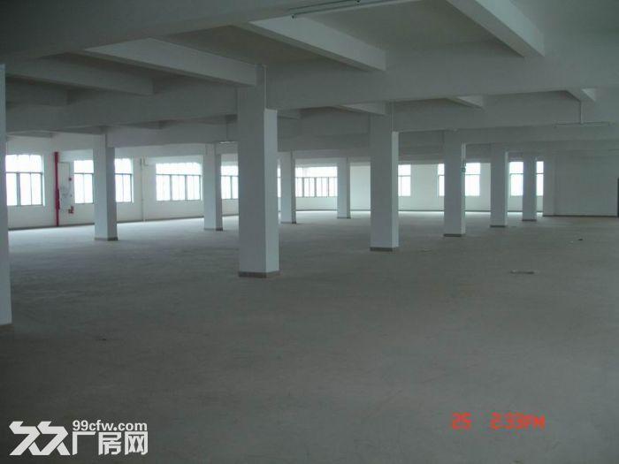 个人.东善桥工业园二楼2000平米普通标准厂房-图(2)