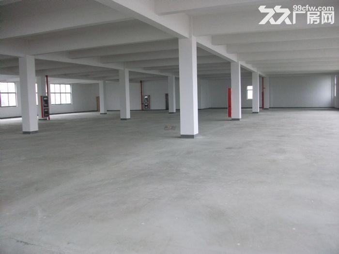 个人.东善桥工业园二楼2000平米普通标准厂房-图(3)