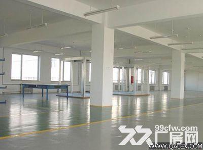 个人.东善桥工业园二楼2000平米普通标准厂房-图(4)