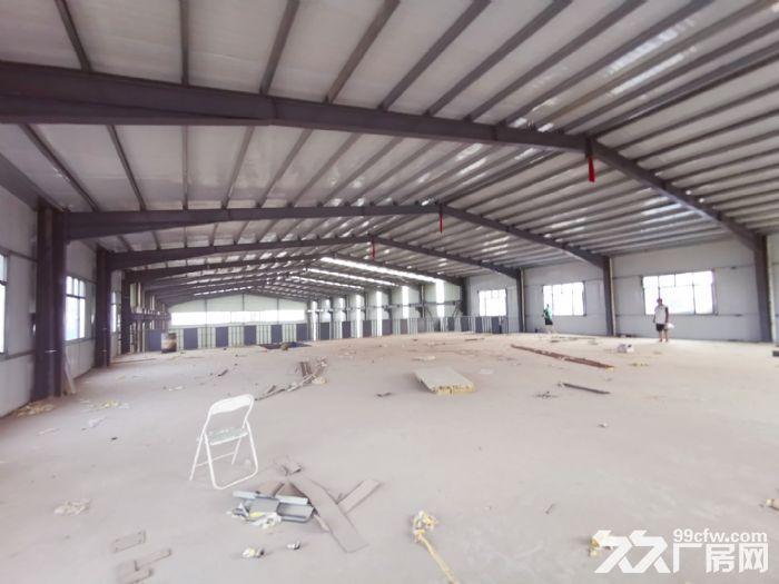 标准化全新厂房钢结构混凝土厂房-图(2)