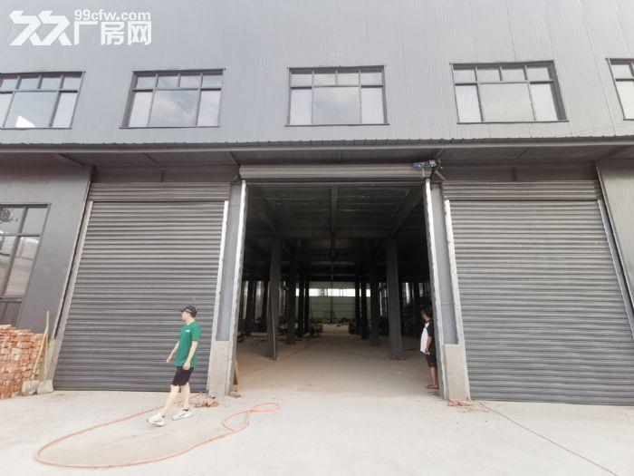 标准化全新厂房钢结构混凝土厂房-图(4)