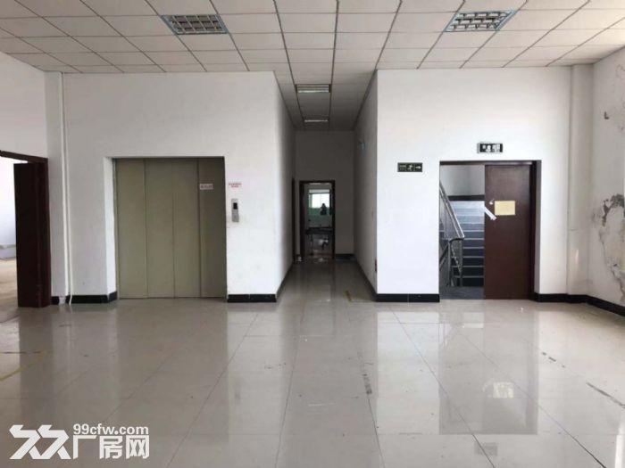 浦东康桥一手房东直租1400平二楼厂房办公、仓库、车间都行!有电梯,有产证-图(4)