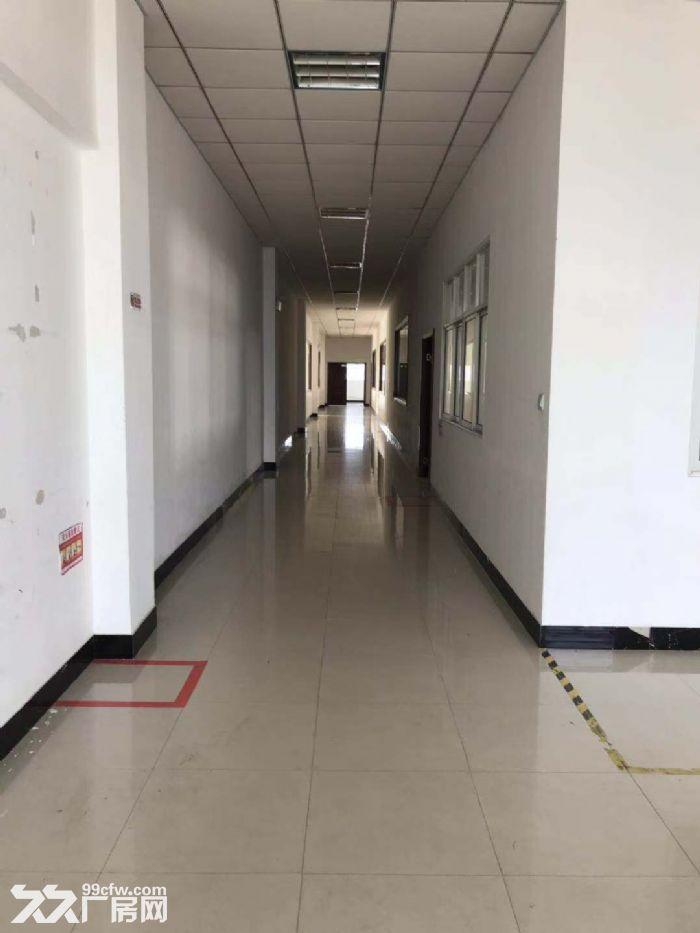 浦东康桥一手房东直租1400平二楼厂房办公、仓库、车间都行!有电梯,有产证-图(5)