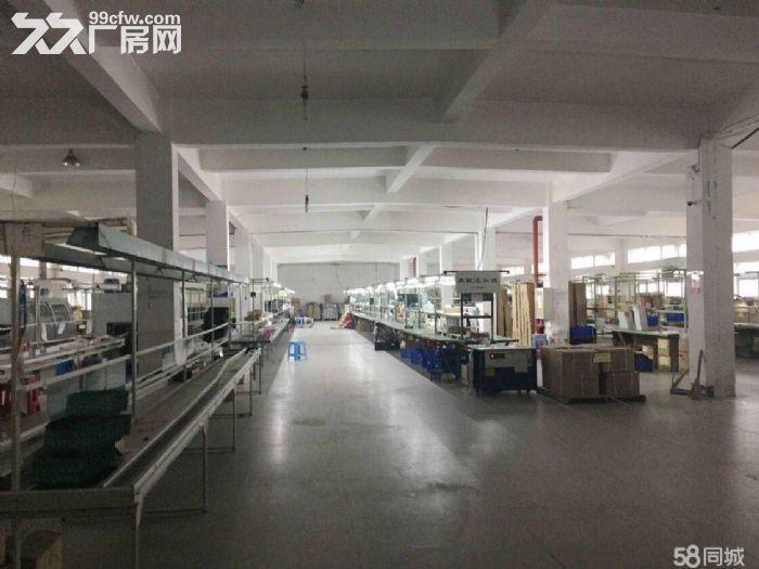 武汉中小企业城3700平米独栋厂房出售证件齐全可过户-图(4)