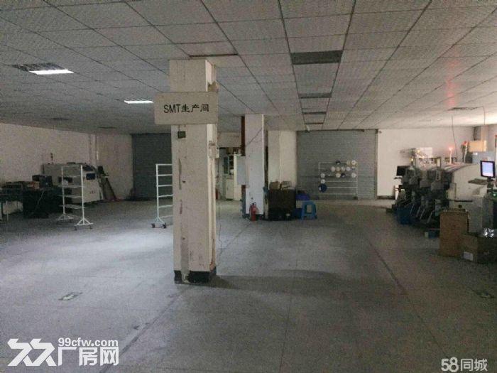 武汉中小企业城3700平米独栋厂房出售证件齐全可过户-图(3)