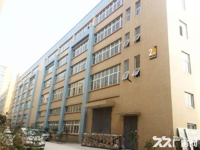 急租爱迪克斯工业园870平米厂房租金11元/平米/月-图(6)