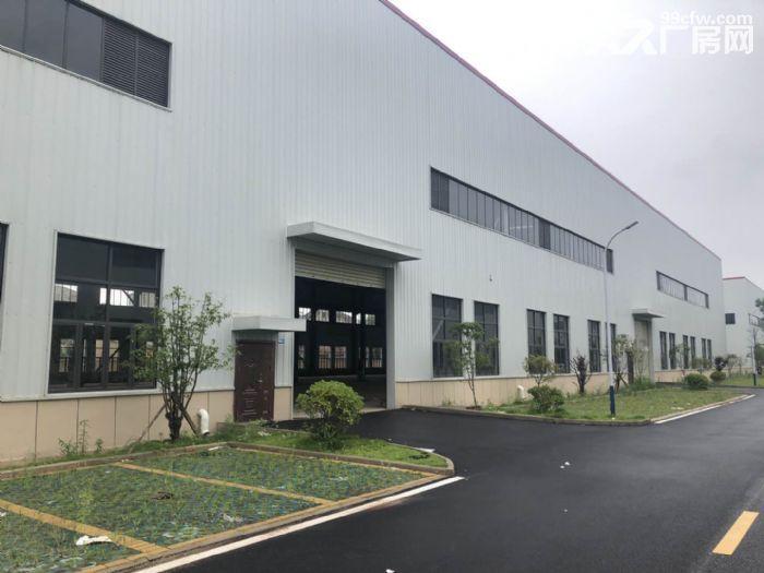 阳逻经济开发区1000−15000平米全新单层钢构厂房出租-图(2)