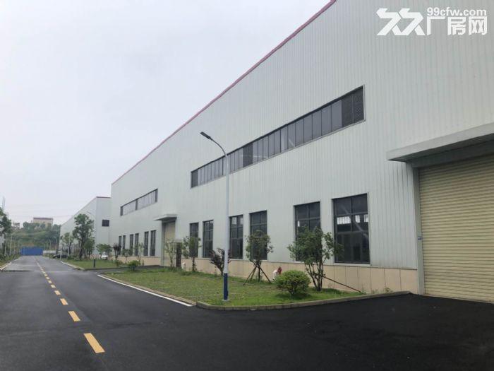 阳逻经济开发区1000−15000平米全新单层钢构厂房出租-图(3)