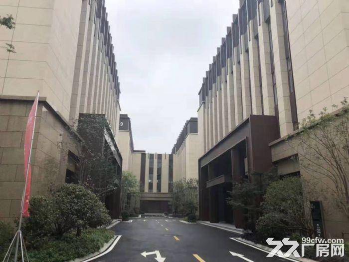 松江新桥仓库独栋1600平出售价格可谈电梯2T交通位置好-图(3)