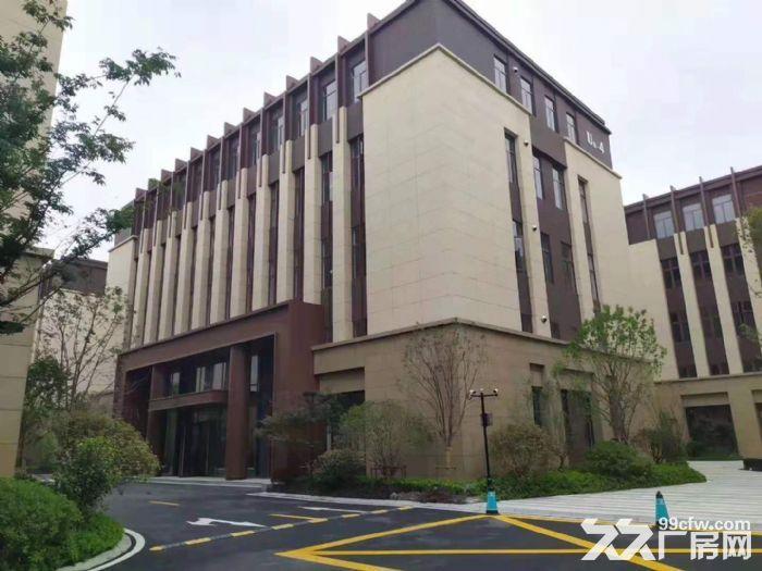 松江新桥仓库独栋1600平出售价格可谈电梯2T交通位置好-图(2)
