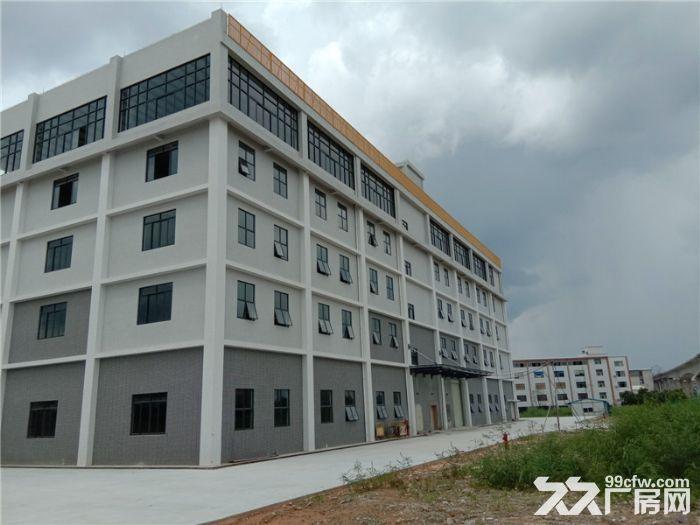 大型工业园,可分层租,喷淋消防,番禺石基50000方标准厂房出租-图(4)