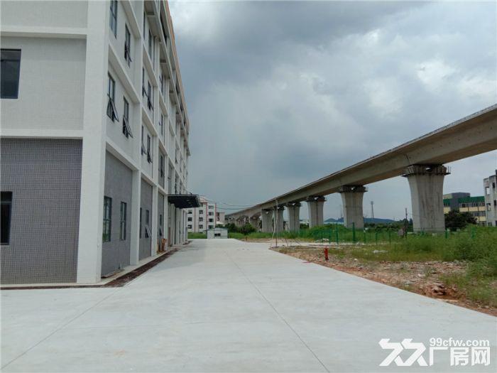 大型工业园,可分层租,喷淋消防,番禺石基50000方标准厂房出租-图(6)