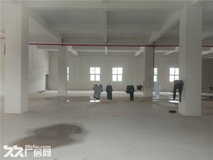 大型工业园,可分层租,喷淋消防,番禺石基50000方标准厂房出租-图(8)