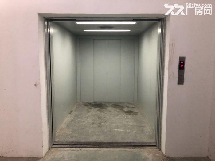 沌口军山科技产业园1600平米三楼厂房出租带3吨货梯-图(2)