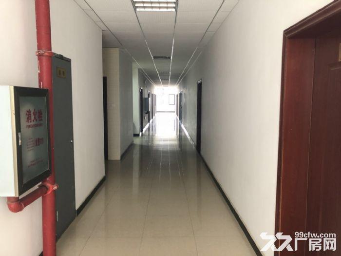 沌口军山科技产业园1600平米三楼厂房出租带3吨货梯-图(7)