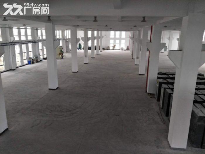15000平米厂房招租设施齐全场地宽敞部分面积铺有环氧地坪-图(3)
