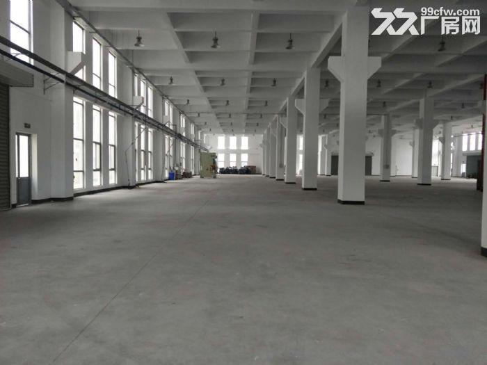 15000平米厂房招租设施齐全场地宽敞部分面积铺有环氧地坪-图(6)