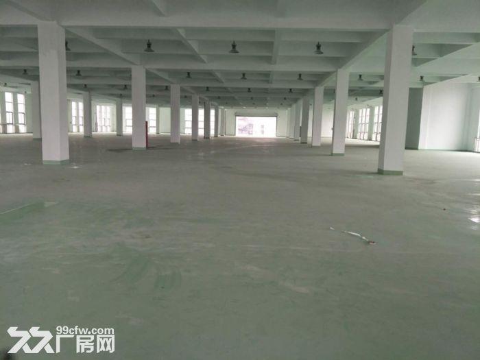 15000平米厂房招租设施齐全场地宽敞部分面积铺有环氧地坪-图(4)