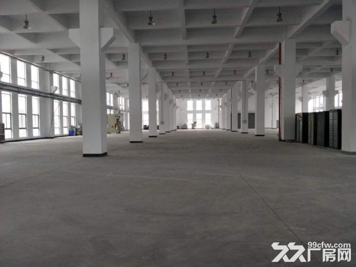 15000平米厂房招租设施齐全场地宽敞部分面积铺有环氧地坪-图(5)