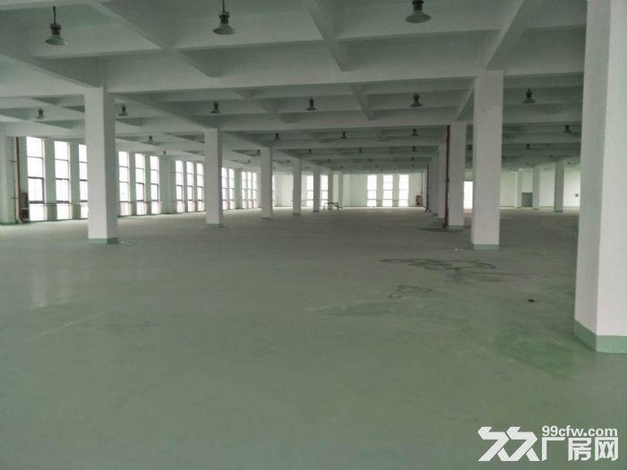 15000平米厂房招租设施齐全场地宽敞部分面积铺有环氧地坪-图(7)