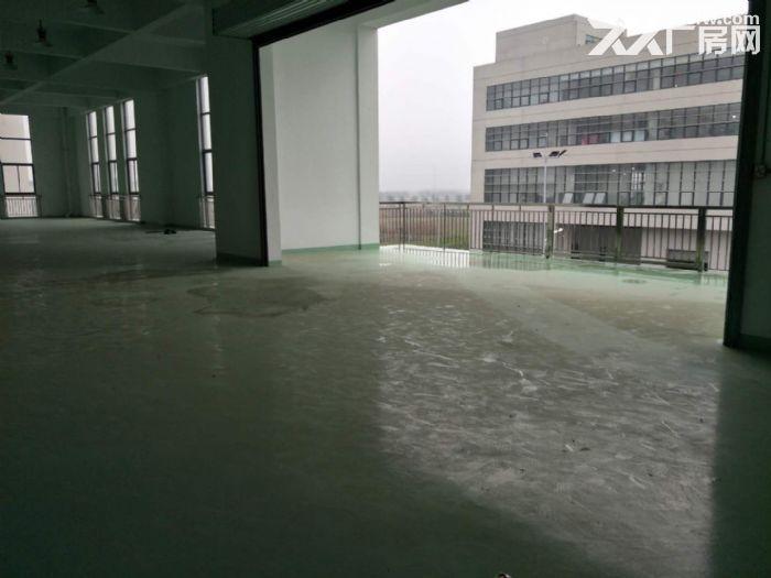 15000平米厂房招租设施齐全场地宽敞部分面积铺有环氧地坪-图(8)