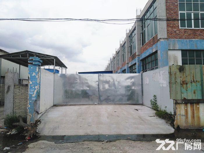 市政排污,独院,空地大,南沙榄核2000方标准厂房出租-图(1)