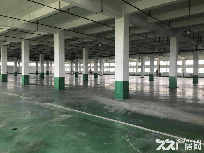 祝桥多层厂房出租可做培训加工可分租可环评南汇-图(3)