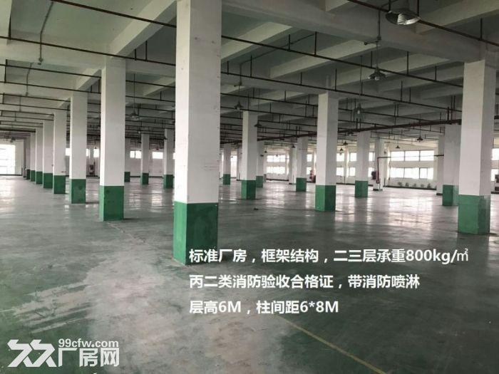祝桥多层厂房出租可做培训加工可分租可环评南汇-图(4)