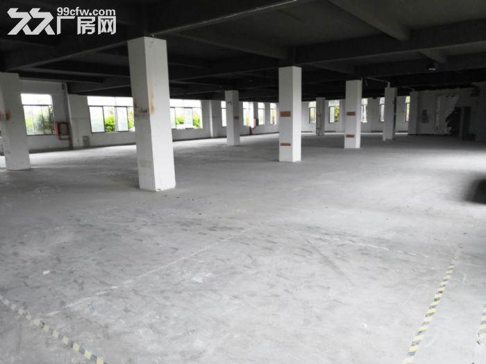 车墩临街厂房,汽修、展厅服装特卖好地段-图(6)