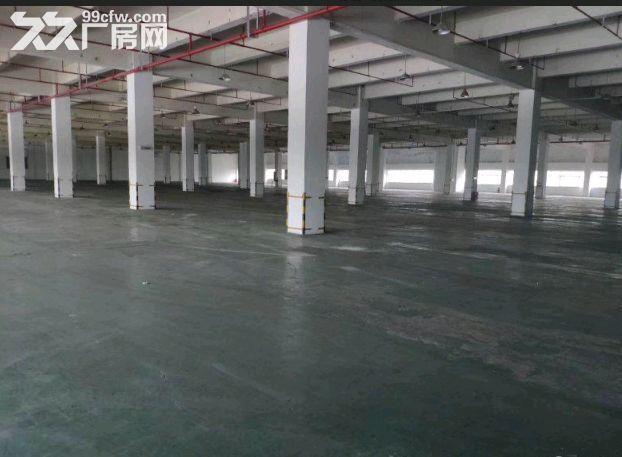 祝桥多层厂房出租可做培训加工可分租可环评南汇-图(6)