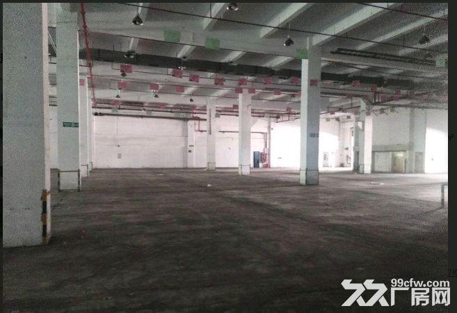 祝桥多层厂房出租可做培训加工可分租可环评南汇-图(7)