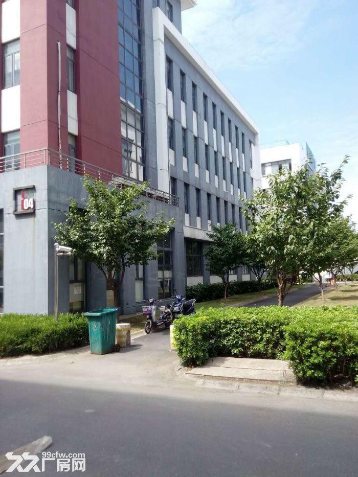 车墩独栋厂房出租每层面588平米形象佳-图(1)
