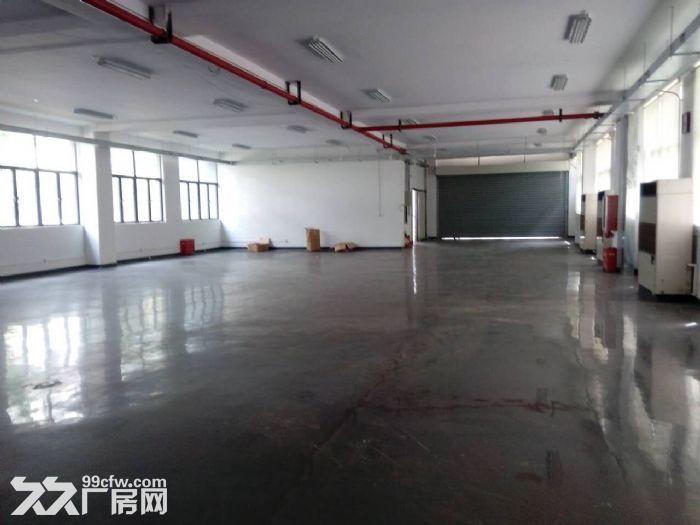 车墩独栋厂房出租每层面588平米形象佳-图(4)
