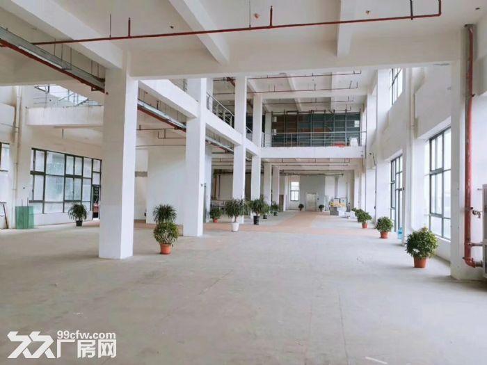 新桥独院独栋食品园区,三证齐全小面积150平起分-图(2)