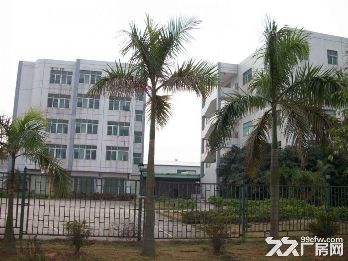 清溪上元一楼带装修厂房出租630平原房东业主分组水电齐全-图(2)