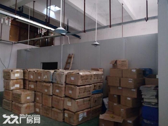 清溪上元一楼带装修厂房出租630平原房东业主分组水电齐全-图(3)
