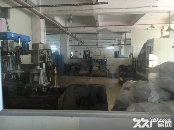 清溪上元一楼带装修厂房出租630平原房东业主分组水电齐全-图(4)