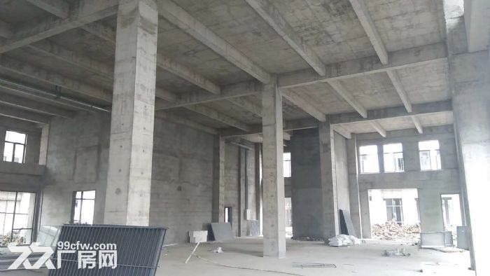 金桥开发区1500平独栋厂房50年产权-图(4)