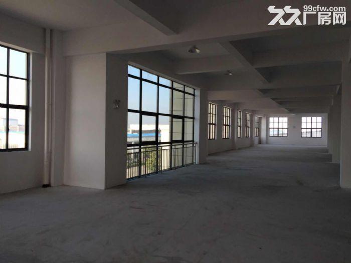 海陵工业园区大楼一栋招租附带大面积独立停车场-图(1)