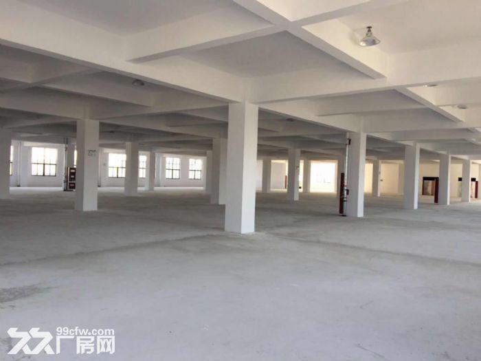 海陵工业园区大楼一栋招租附带大面积独立停车场-图(2)