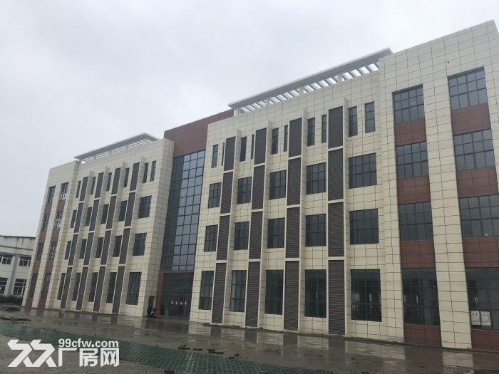 海陵工业园区大楼一栋招租附带大面积独立停车场-图(4)