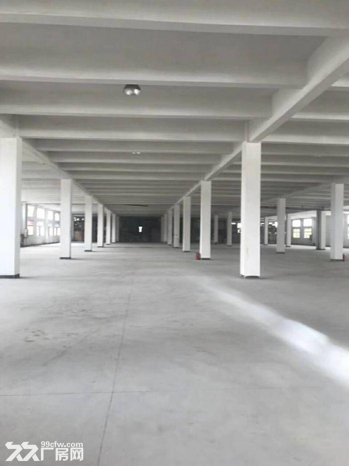 金湾红旗25000平方单一层厂房,位置好,配套齐-图(1)