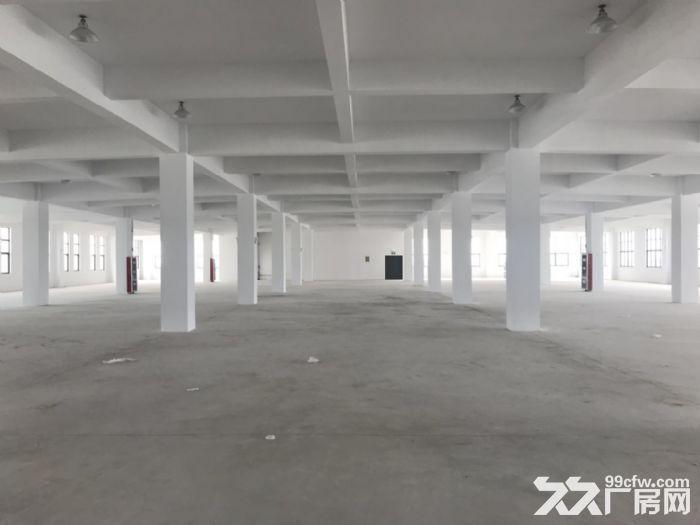 海陵工业园区大楼一栋招租附带大面积独立停车场-图(6)